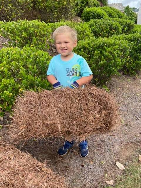 Stepping Stone Lawn Care - Pine Straw Mulch Delivery Installation - Flowery Branch Buford Georia GA
