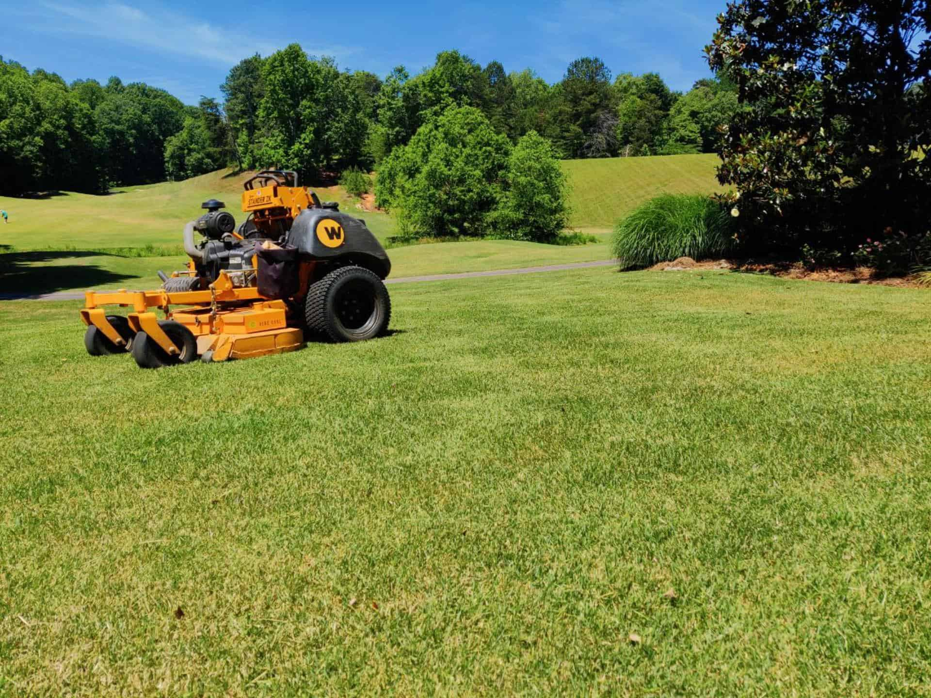 Lawn Care Maintenance Service by Stepping Stone Lawn Care company - Buford - Flowery Branch - Suwanee - Sugar Hill - Georgia